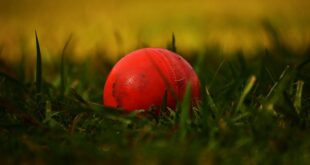 Cricket Bowling Machines